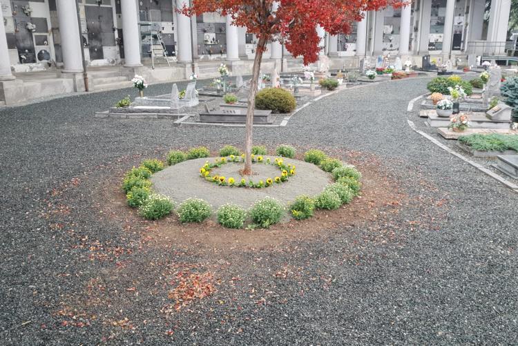 Allestimenti floreali all'interno dei cimiteri cittadini