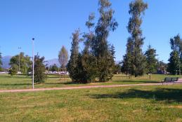 I giardini di via Trivero. Sullo sfondo Skate Park e mercato